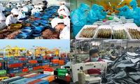 ADB menaikkan prakiraan pertumbuhan ekonomi Vietnam untuk tahun 2019 dan 2020
