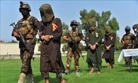 Afghanistan: Ada lebih dari 80 pembangkang Taliban yang telah dibasmi