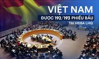 Pekerjaan diplomatik  2019: Memanifestasikan kapabilitas dan posisi politik Vietnam