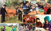 Membentuk Dewan Pemeriksaan  Program Target Nasional tentang pengembangan sosial-ekonomi di daerah etnis minoritas dan daerah pegunungan
