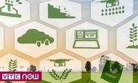 Menciptakan lenting baru bagi usaha startup di bidang pertanian pintar