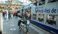 Eropa mengaitkan rencana memulihkan ekonomi dengan upaya melaksanakan Permufakatan Hijau