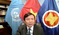 Vietnam Bersama Dengan Komunitas Internasional Mengusahakan Solusi Bagi Masalah Somalia
