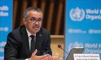 WHO Serukan Mendorong Kepemimpinan Perempuan di Tengah Pandemi Covid-19