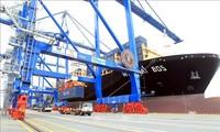 IMF Prediksi Vietnam Akan Capai Laju Pertumbuhan GDP yang Paling Cepat di ASEAN Pada 2022