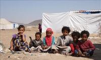 PBB Peringatkan  Krisis Ketahanan Pangan Serius pada 2020