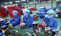 EVFTA: Ranah Potensial Bagi Badan Usaha Vietnam
