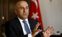 Turkey calls for a campaign against IS