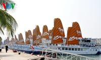 4 international cruise ships carry 6200 tourists to Ha Long