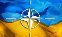 NATO recognizes Ukraine as aspirant country
