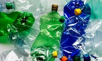 Foreign embassies, organisations advocate reducing plastic pollution in Vietnam