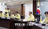 South Korean officials consider air route through Korean peninsula
