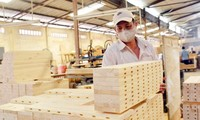 Vietnam-EU agreement on forestry to take effect June 1st