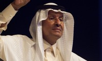 Saudi Arabia's nuclear reactor construction raises concerns in Middle East