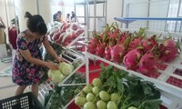 EVFTA brings opportunity to agricultural sector