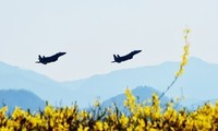 South Korea, US hold joint air exercises
