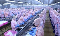 Trade Ministry calls US's removal of anti-dumping duties on Minh Phu frozen shrimp fair decision