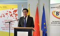 Badan usaha Belgia memperkuat kerjasama hubungan perdagangan dengan Vietnam