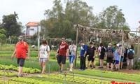Wisman yang datang ke Vietnam terus meningkat