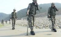 Dua bagian negeri Korea mulai menyinakkan ranjau dalam zona denuklirisasi