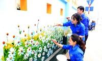 """Pemuda Ibu Kota aktivitas sukarela relawan demi satu """"Kota Hanoi yang hijau"""""""