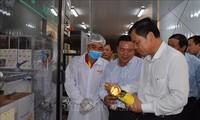 Vietnam menjadi pasar yang potensial bagi ikan patin