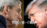 Presiden Donald Trump mencela investigasi terhadap intervensi Rusia pada pemilihan AS