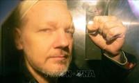 Jaksa Swedia resmi meminta supaya menangkap pendiri WikiLeaks