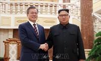 Presiden Republik Korea berharap untuk bertemu dengan Pemimpin RDRK sebelum menerima Presiden AS