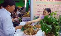 Pembukaan Pesta Ginseng Ngoc Linh ke-3 tahun 2019