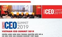 Strategi pelopor dalam transformasi digital dan peluang bagi badan-badan usaha Vietnam