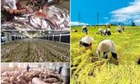 Mendorong produksi pertanian untuk menjamin kebutuhan di dalam negeri dan ekspor pada waktu merebaknya wabah Covid-19