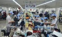 Badan-badan usaha Jerman berharap pada pemulihan ekonomi Vietnam untuk jangka menengah