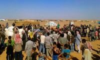 DK PBB membolehkan mengadakan kembali bantuan lintas perbatasan bagi Suriah