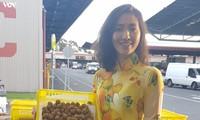 Kelengkeng segar Vietnam masuk ke pasar Australia
