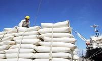 Ekspor beras Vietnam ke pasar Afrika terus meningkat