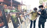 """Pameran Foto """"Sambut Musim Semi 2021 – Sambut PKV yang Jaya"""