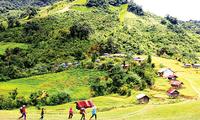Provinsi Khanh Hoa dengan Aktif Pikirkan Kehidupan Warga Etnis Minoritas