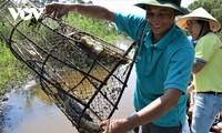 Para Petani Ca Mau Operasikan Ekowisata