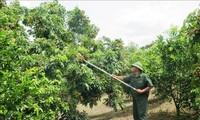 Chieng Khuong – Kecamatan Perbatasan yang Berubah melalui Program Pembangunan Pedesaan Baru