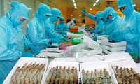Perkenalan Sepintas tentang Politik Luar Negeri dan Peranan Pemerintah Vietnam dalam Majukan Industri Perikanan