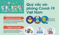 Perkenalan Sepintas tentang Mangga Vietnam dan Dana Vaksin Covid-19 di Vietnam