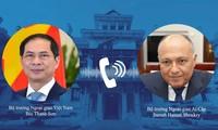 Vietnam dan Mesir Sepakat Dorong Kerja Sama Bilateral di Forum-Forum Multilateral