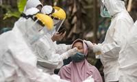 Indonesia Jamin Pasokan dan Harga Obat Pengobatan Covid-19