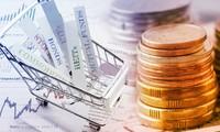 Investasi Vietnam Ke Luar Negeri Selama 8 Bulan Meningkat 74%