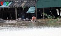 Das vietnamesische Rote Kreuz und die Rettung nach der Flut