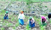 Die aktive Rolle der Bevölkerung bei der Armutsminderung