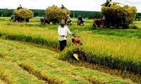 Die Investition der Unternehmen in der Landwirtschaft verstärken