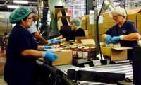 ILO warnt vor der Ungleichheit zwischen Frauen und Männern auf dem Arbeitsmarkt