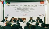Staatspräsident Truong Tan Sang beendet Besuch in Mosambik